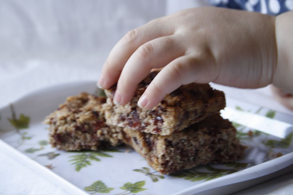 oat bar toddlers